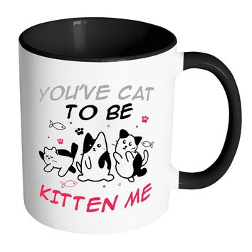 Funny Cat Mug Youve Cat To Be Kitten Me White 11oz Accent Coffee Mugs