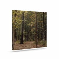 "Sylvia Coomes ""Forest Trees"" Green Brown Canvas Art"