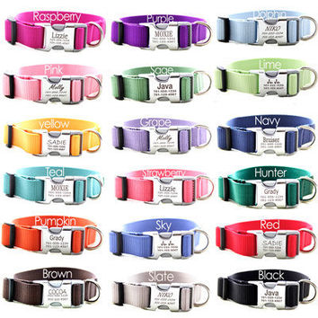 Buckle Martingale Dog Collar  Personalized with by shopmimigreen