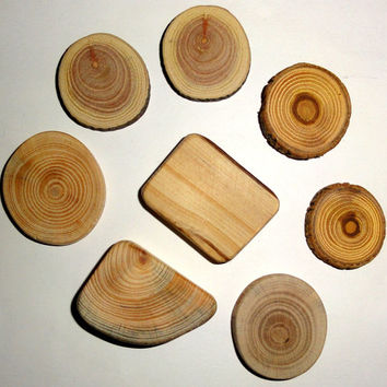 Various wood slices mix. Jewelry supplies, wall art, small wooden discs. Jewelry findings, wooden jewelry parts, jewellery making supply.