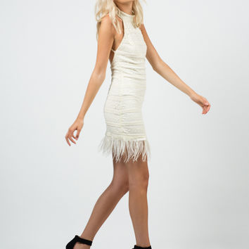 Feathered Lacey Dress