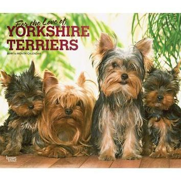 Yorkshire Terriers Wall Calendar, Dog Breeds S-Z Browntrout by BrownTrout