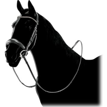 Equiline Dressage Bridle