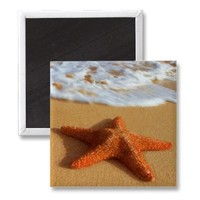Starfish Magnet from Zazzle.com