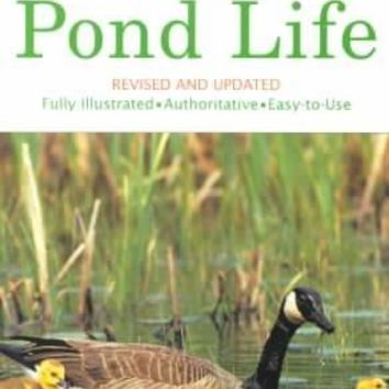 Pond Life: A Guide to Common Plants and Animals of North American Ponds and Lakes (Golden Guide)