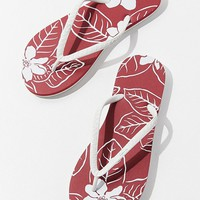 HAYN Zane Tropical Floral Flip-Flop   Urban Outfitters