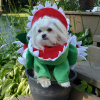 Venus Fly Trap Dog Costume for Small Breed Dogs