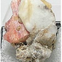 Salmon pink Serandite with Aegerine and Analcime Natural Thumbnail Rare Mineral Specimen MSH Canada