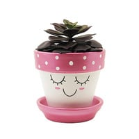 Succulent Planter, Terracotta Pot, Cute Face Planter, Air Plant Holder, Plant Pot, Flower Pot, Indoor Planter, Succulent Pot, Pink Planter
