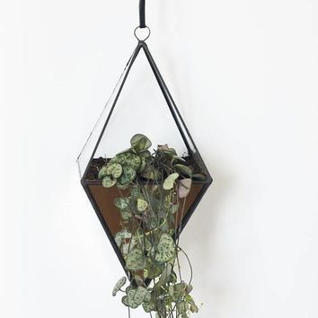 Geometric Indoor terrarium with mirrored glass