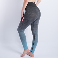 New Women Sport Leggings Fitness High Waist Stretch Gym Running Cropped Leggings Athletic Trousers Leggings Fitness Legging
