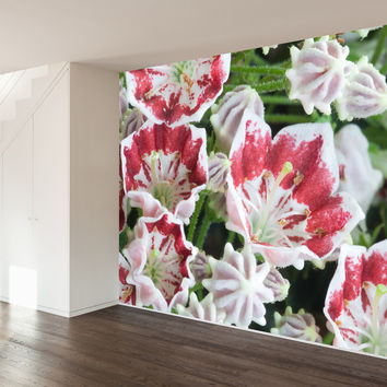 Paul Moore's Mountain Laurel Mural wall decal