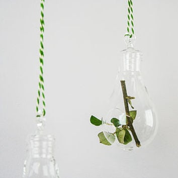Lightbulb, Glass Hanging Vase