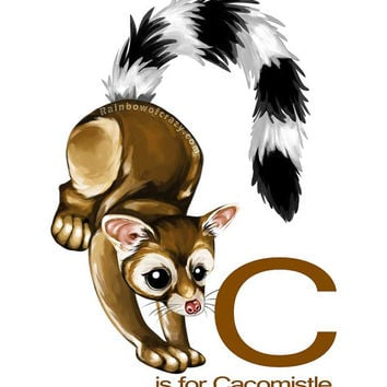 Alphabet Letter C is for Cacomistle, Ring-tailed Cat, Custom Name, Nursery Wall Art, Kids Bedroom Print, Monogram Art, Woodland Animals