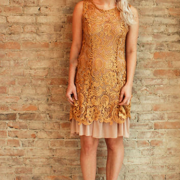 Joss Lace Dress - Golden