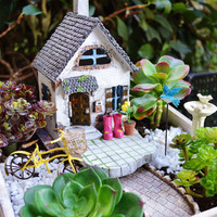 Beach Cottage Garden Kit  ~ Miniature House ~ Wooden Planter ~ Herb Garden Kit ~ Birdbath ~ Bike ~ Rain boots ~ Plants + Soil Not Included