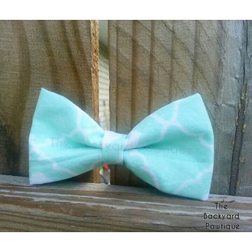 Mint dog bowtie, mustard bowtie, yellow bowtie, bowtie collar slider, mint bowtie collar slider,  pet accessories,  collars for cats