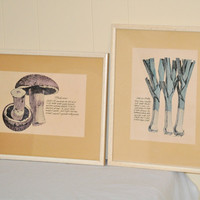 Vintage Food Veggie Vegetable Prints Framed Kitchen Art Set Leeks & Mushrooms Collection