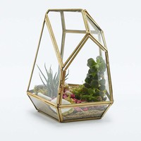 Geo Crystal Terrarium - Urban Outfitters