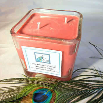 Macintosh Apple Scented Soy Candle in 12 oz Glass Cube