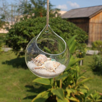 Handmade hanging glass balls,Succulents plant vase,10cm/12cm/15cm round transparent glass vase, terrarium kit,wedding supplies