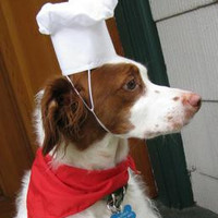 Chef's Hat and Scarf