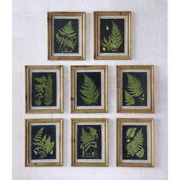 Vintage Botanical Fern Fine Art Print -- 13-in