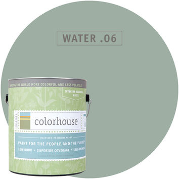Paint by Colorhouse WATER .06