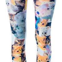 Abandon Ship Apparel Krazy Kittens Leggings Multi