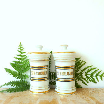 19th Century Apothecary Jars French Apothecary Jars Ginori Antique Pharmacy Cabinet Chemist Belladonna Chamomile Nightshade