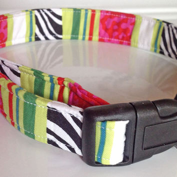 Pink Green & Black Striped Watermelon Female Dog & Cat  Collar for Summer
