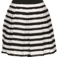 Earn Your Stripes Mini