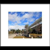 California Academy Of Sciences Framed Print