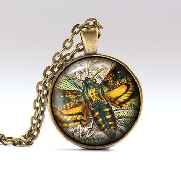 Insect chain Vintage necklace Moth pendant RO125