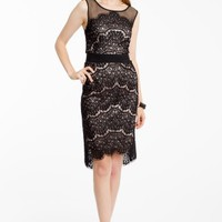 Illlusion two Tone Lace Dress