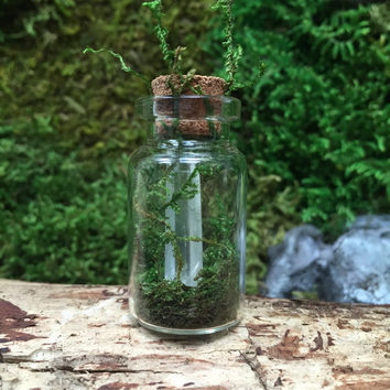 Quartz Crystal Healing Mini Terrarium