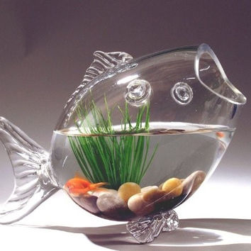 Cat Toy With Fishes Bowl