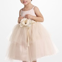 Toddler Girl's Us Angels Tulle Ballerina Dress