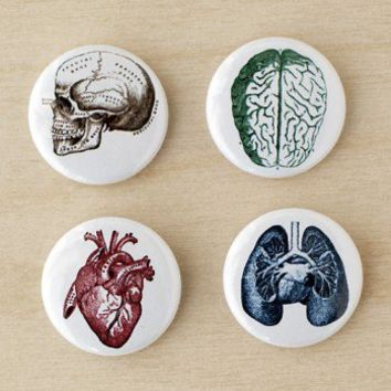 ShanaLogic.com - 100% Handmade  Independent Design! Vintage Anatomy Pin Set - New Arrivals