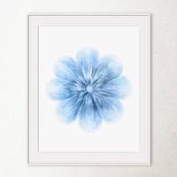 Sky blue flower wall decor, Flower art print, Printable wall art print, Flower decor Wall print, Blue decor Digital print, Bathroom decor