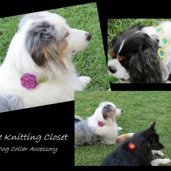 Flower Headband Pattern - Crochet Headband Pattern - Dog Accessory