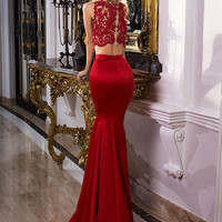 Prom Dress, Red Dress, Fitted Dress, Party Dress, 2 Pieces Prom Dress