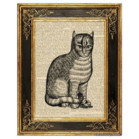 Renaissance Cat Art Print