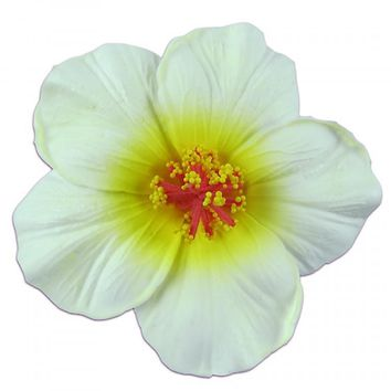 Large Foam White and Yellow Hibiscus Hair Clip