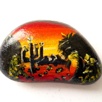 Painted Rock Southwest Sunset Cactus Arizona Landscape