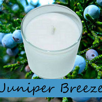 Juniper Breeze Scented Candle in Tumbler 13 oz