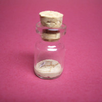 A tiny fossilized Pteranodon in a tiny bottle