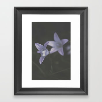 Botanical Still Life Photography Lily Wildflower Framed Art Print by ARTbyJWP