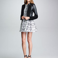 Parade Suede/Leather Jacket & Trapeze Girl Snake-Print Dress