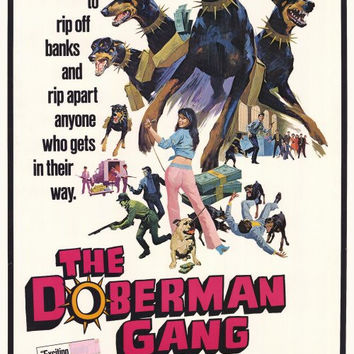 The Doberman Gang 27x40 Movie Poster (1972)